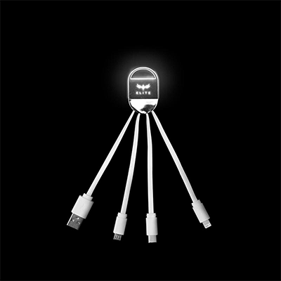 GTT1004 Acrylic 3 in 1 Fast Charge Cable (LED logo) 2 Giftsdepot 3 in 1 Fast Charge Cable view LED